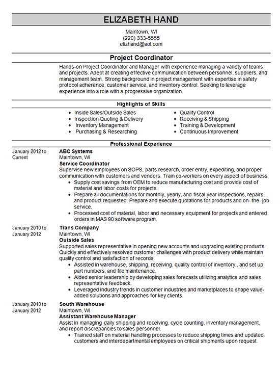 professional summary on resume for sales