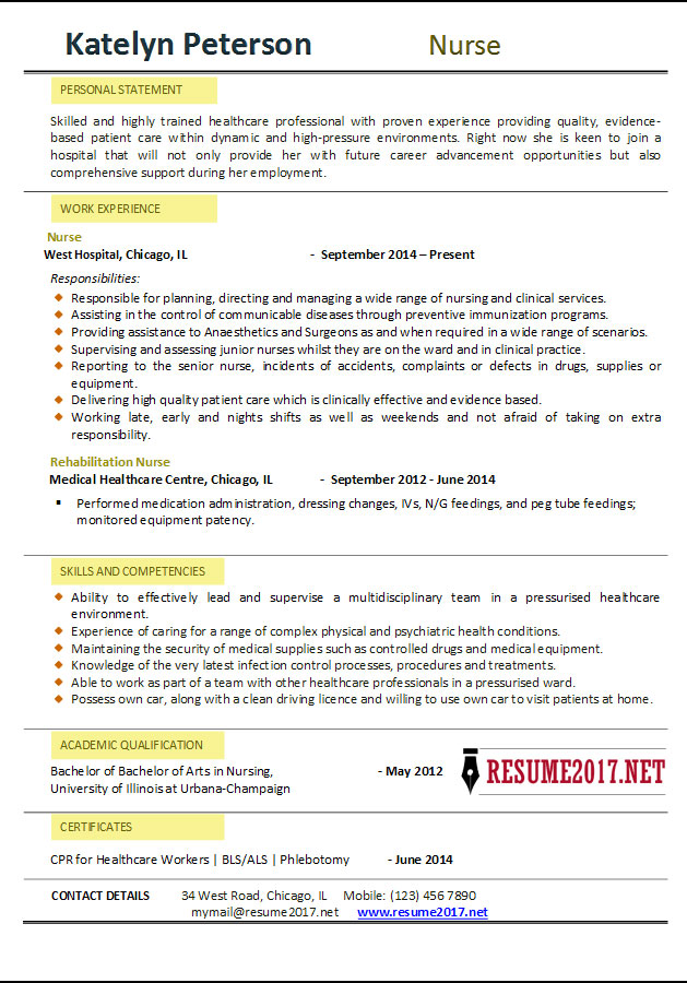 what for it resume template is most successful