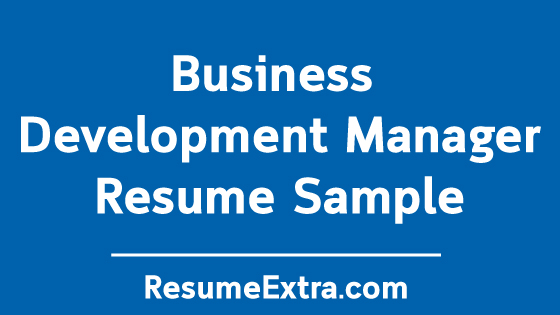 Business Development Manager Achievements Sample Resume » ResumeExtra