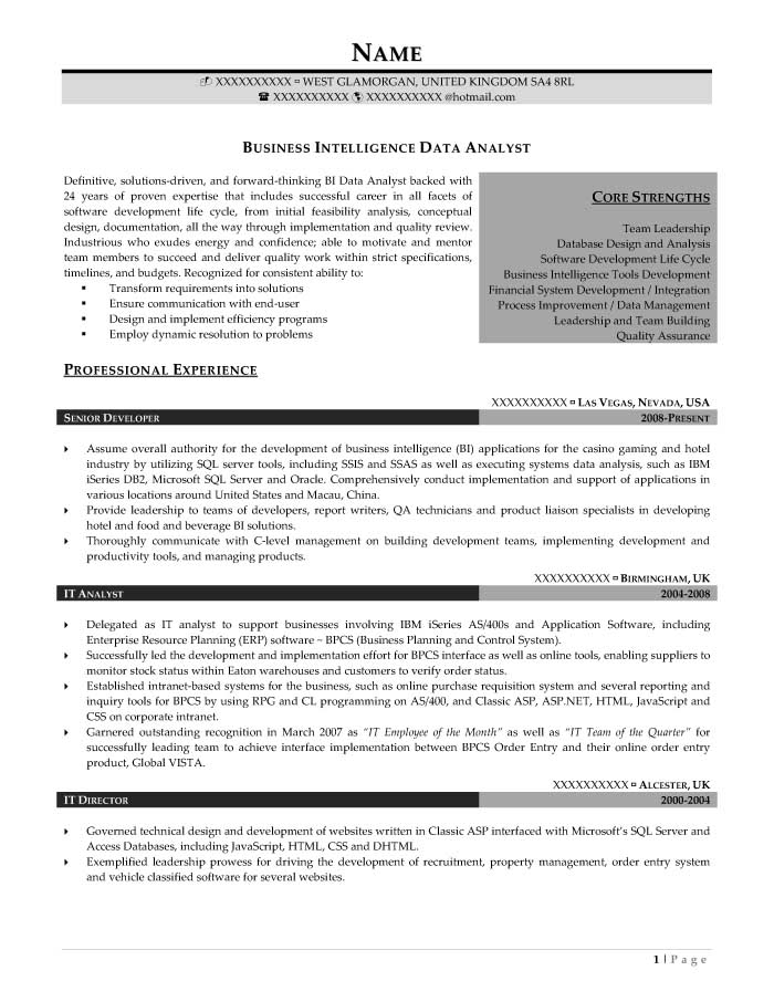 Professional Resume Samples - Resume Prime - analyst resume examples