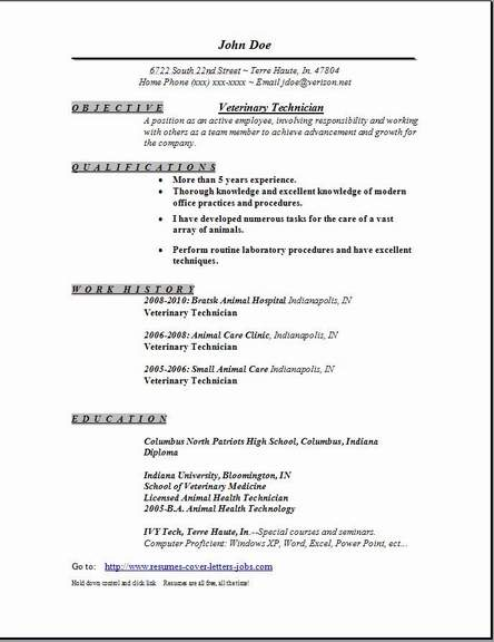 College Resume Examples For High School Seniors   Resume Examples Wareout Com Senior Sandwich Artist Resume samples