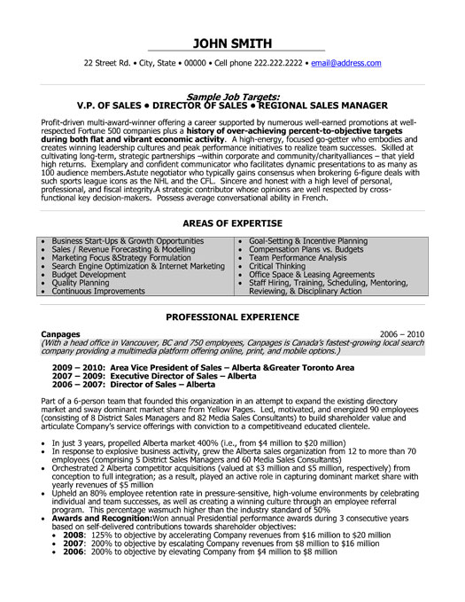 Professional resumes Are they worth the money or just a waste of time? - Media Sales Resume