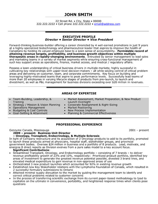 hata404 EXECUTIVE RESUME TEMPLATES - executive resumes templates