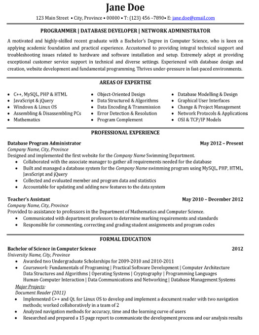information technology executive resume samples