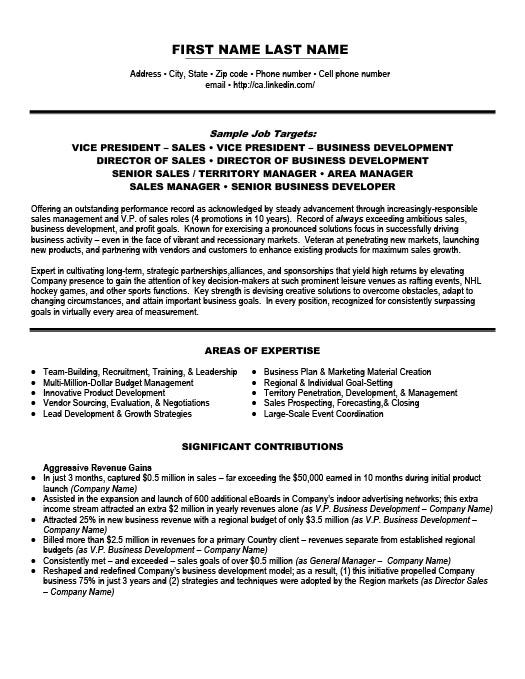sample vice president of broadcast sales resume