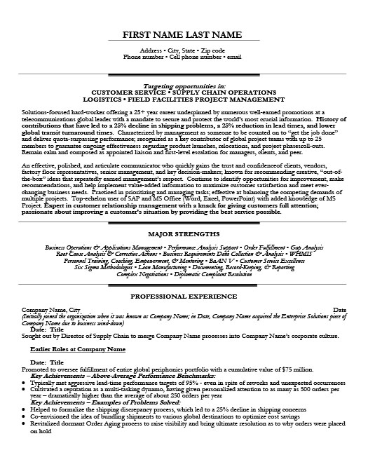 Global Order Fulfillment Officer Resume Template Premium Resume