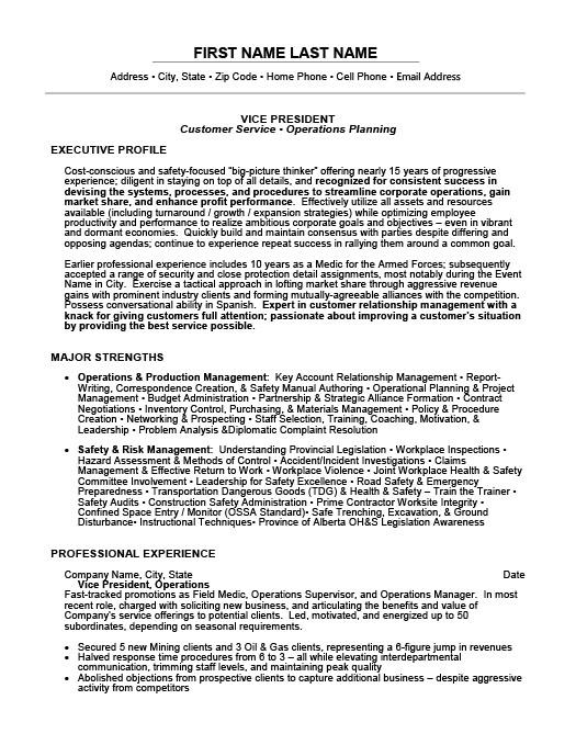 Vice President Resume Template Premium Resume Samples  Example - executive profile template