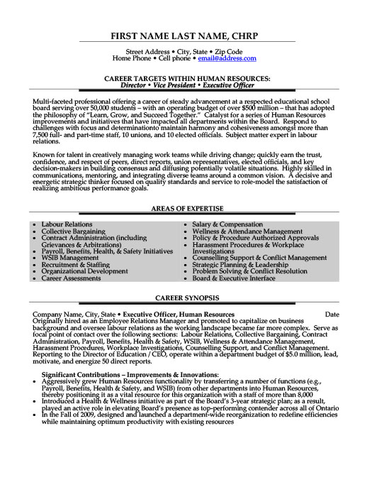 Director or Vice President or Executive Officer Resume Template