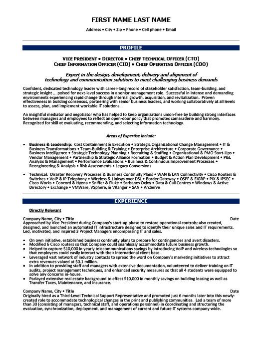 Vice President of Operations Resume Template Premium Resume