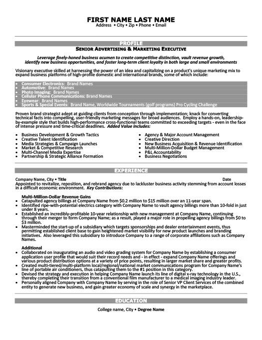 Senior Advertising  Marketing Executive Resume Template Premium