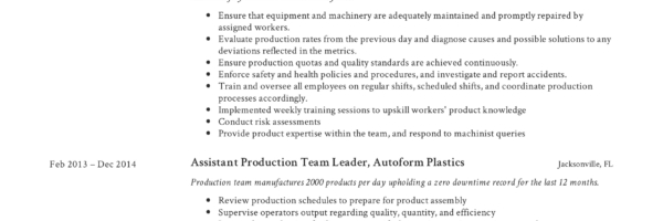Full Guide Production Team Leader Resume +12 Samples Word  PDF