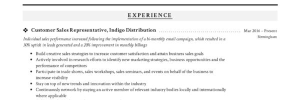 Guide Customer Sales Representative Resume +12 Samples PDF 2019