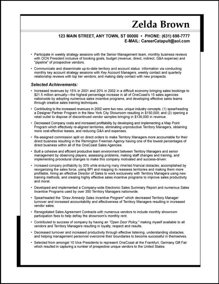 SAMPLE RESUME Sales Executive - door to door sales sample resume