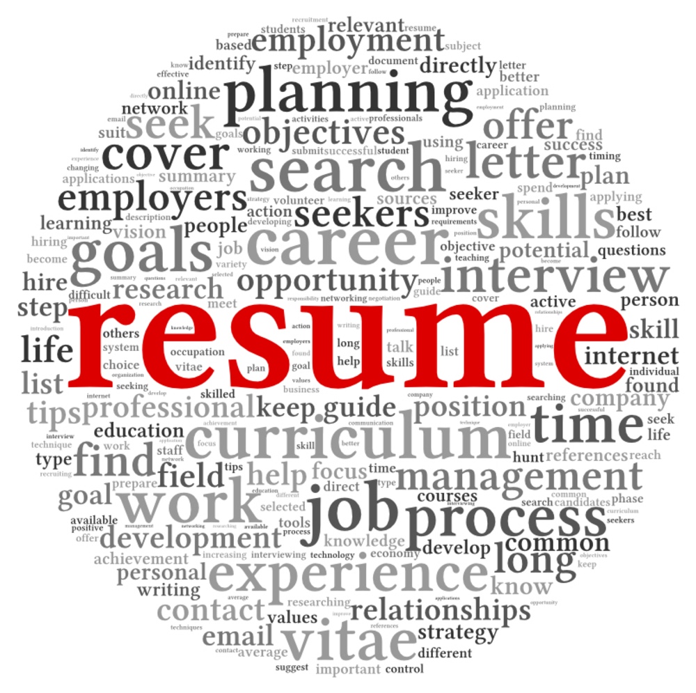 resume writing services photo