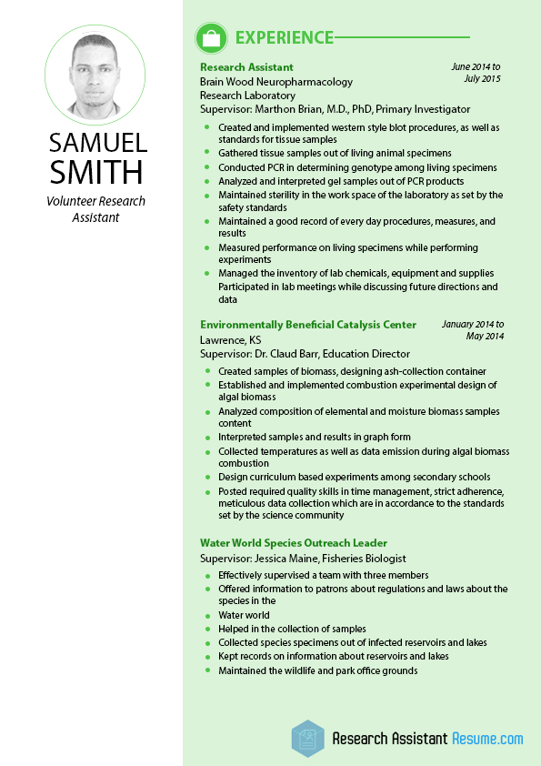 Excellent Sample Of Volunteer Research Assistant Resume