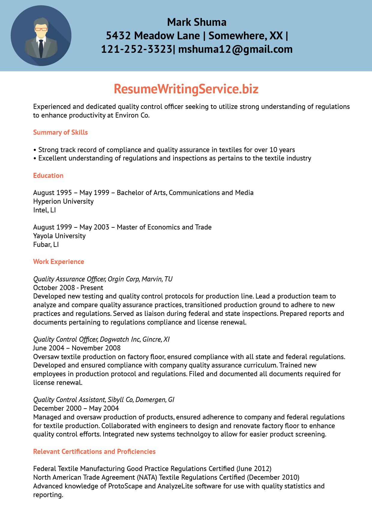 professional work experience resume