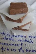 """Ciocolata de casa – """"batonul"""" copilariei! by dana_radu23"""