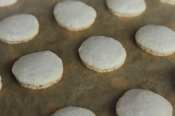 macarons copti