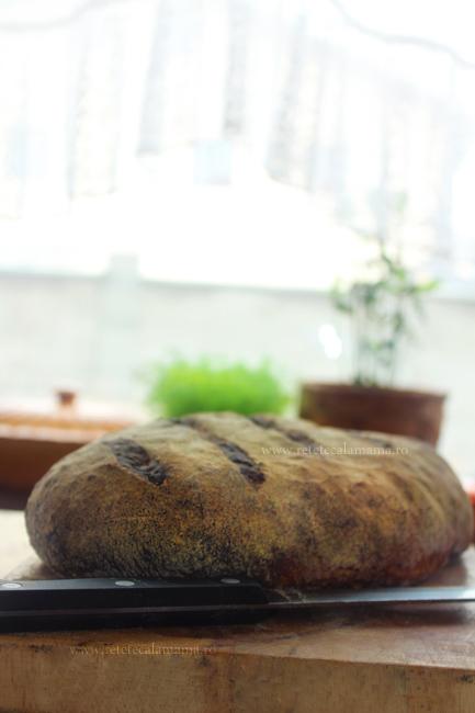 paine de secara retetecalamama 1