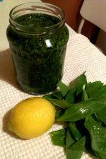 Pesto de leurda de dariaevelin