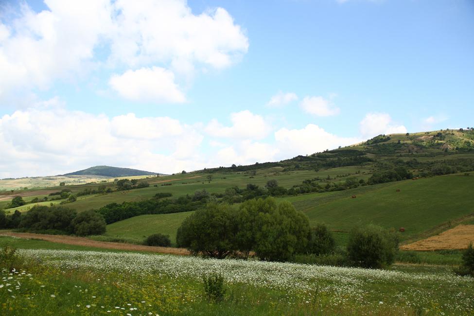 natura Transilvania 4