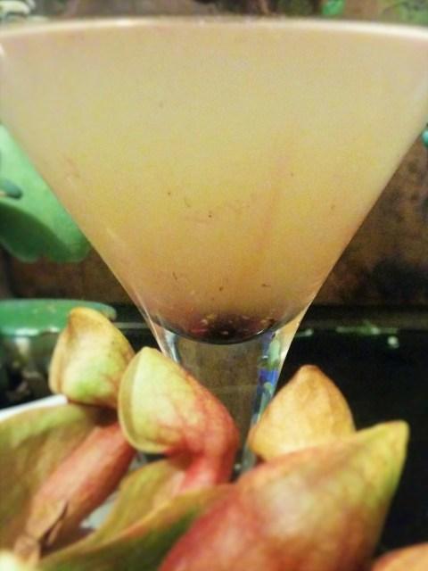 Eld FEn Martini 8