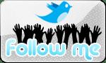 Twitter-13