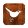 bird3-carre-twitter-icone-8265-96