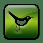 green-jelly-twitter-bird