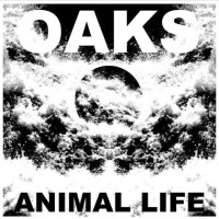 Oaks expand their fuzzy rock on their commanding new LP Animal Life (Release show Friday!)
