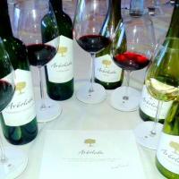 Degustação dos vinhos Arboleda