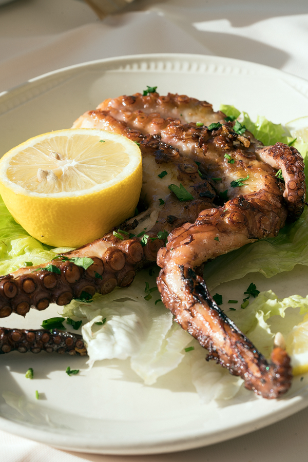 Grilled octopus in Sarandë