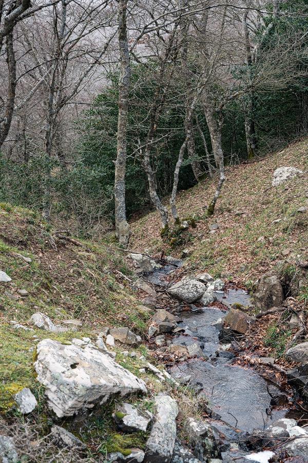 Habitat of Galanthus reginae-olgae subsp. vernalis, Portella della Femmina Morta, Sicily.