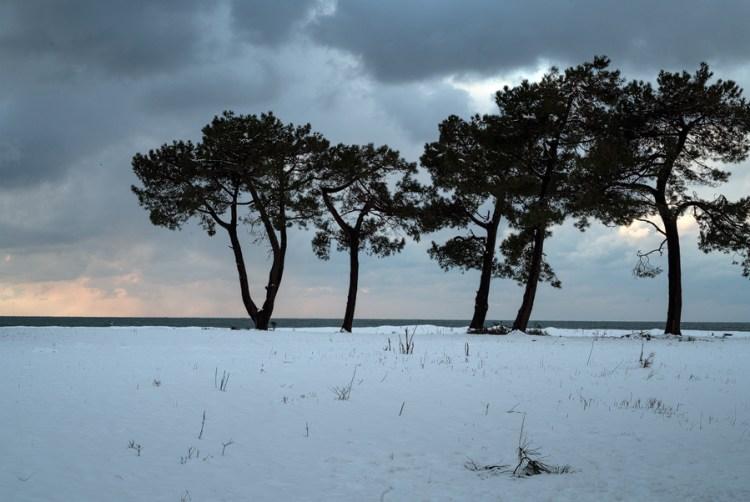 White land, Black Sea