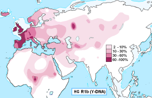 Is Rh Negative Blood Celtic? Haplogroup_R1b_Y-DNA-1