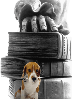 BeagleBook_Voice