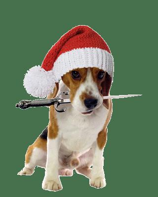 Beagle_Santa_KnitHat