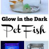 Glow in the Dark Pet Fish Sensory Bottle