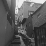 Images of the barrio near to my home