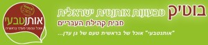 Israeli Border Police Brutally Assault Black Hebrew