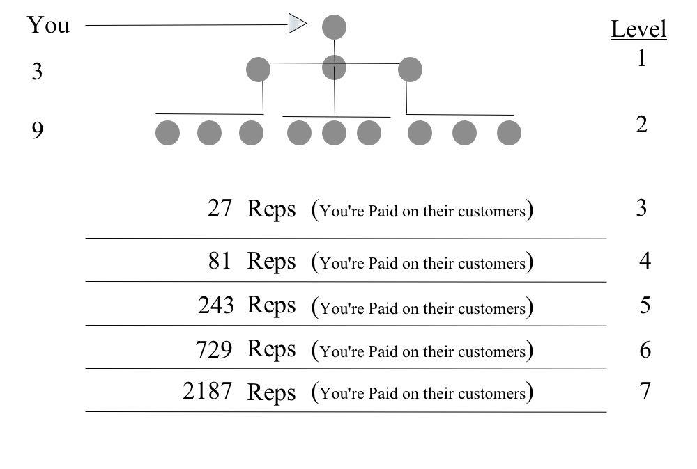 How The Matrix Compensation Plan Works