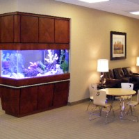 220 gallon aquarium - Aquariums for Sale
