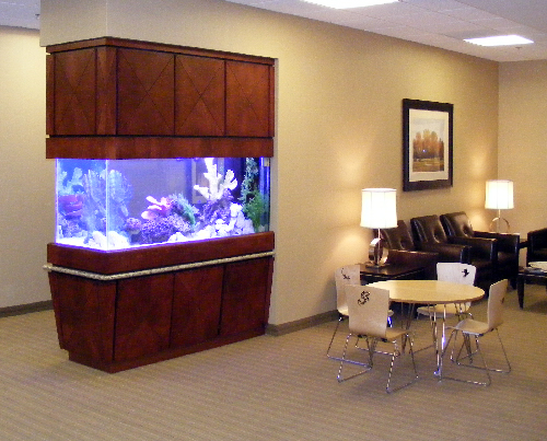 Richmond Radiation Oncology Associate's Relaxing Reef
