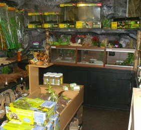 Inside the reptile cave!