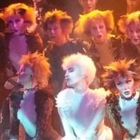 [Comédie Musicale - Info] Cats : Prisca Demarez en tête d'affiche à Paris