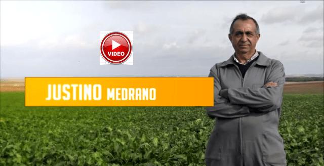 justino-medrano-premio-agricultor-profesional