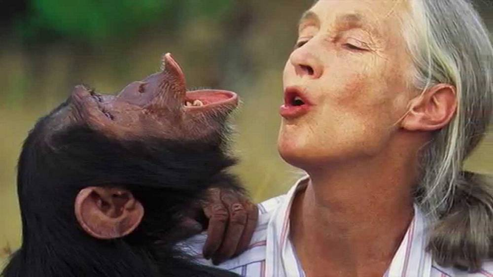 Legendary Primatologist Jane Goodall on Spirituality
