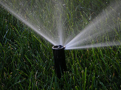 Watering the grass with an irrigation system
