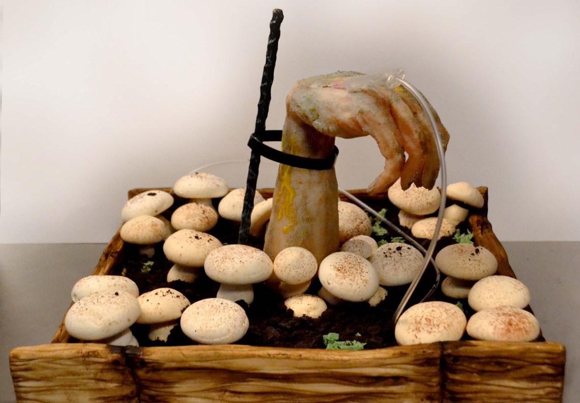 hannibal mushroom cake - 10