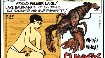Arnold Palmer Lake! Lake Balkhash in Kazakhstan is half saltwater and half freshwater! -------------------- Ancient Egyptians applied electric eels to their skin to cure gout! -------------------- Clawdette, a female lobster located in Portland, Maine, has four functioning claws.